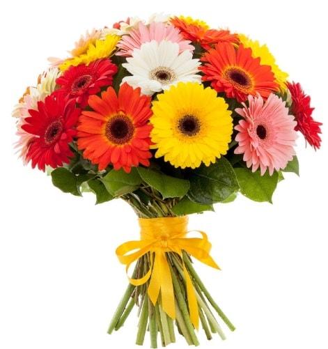 Gerbera demeti buketi  bursa çiçekçiler çiçek satışı